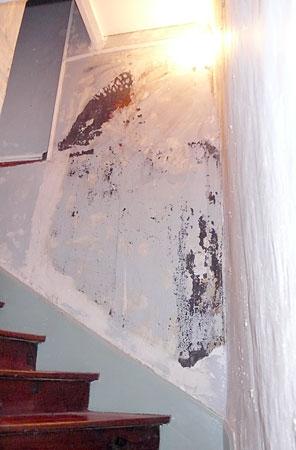 rénovation montée escalier