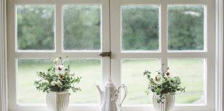 fenêtres blanches avec vue sur jardin